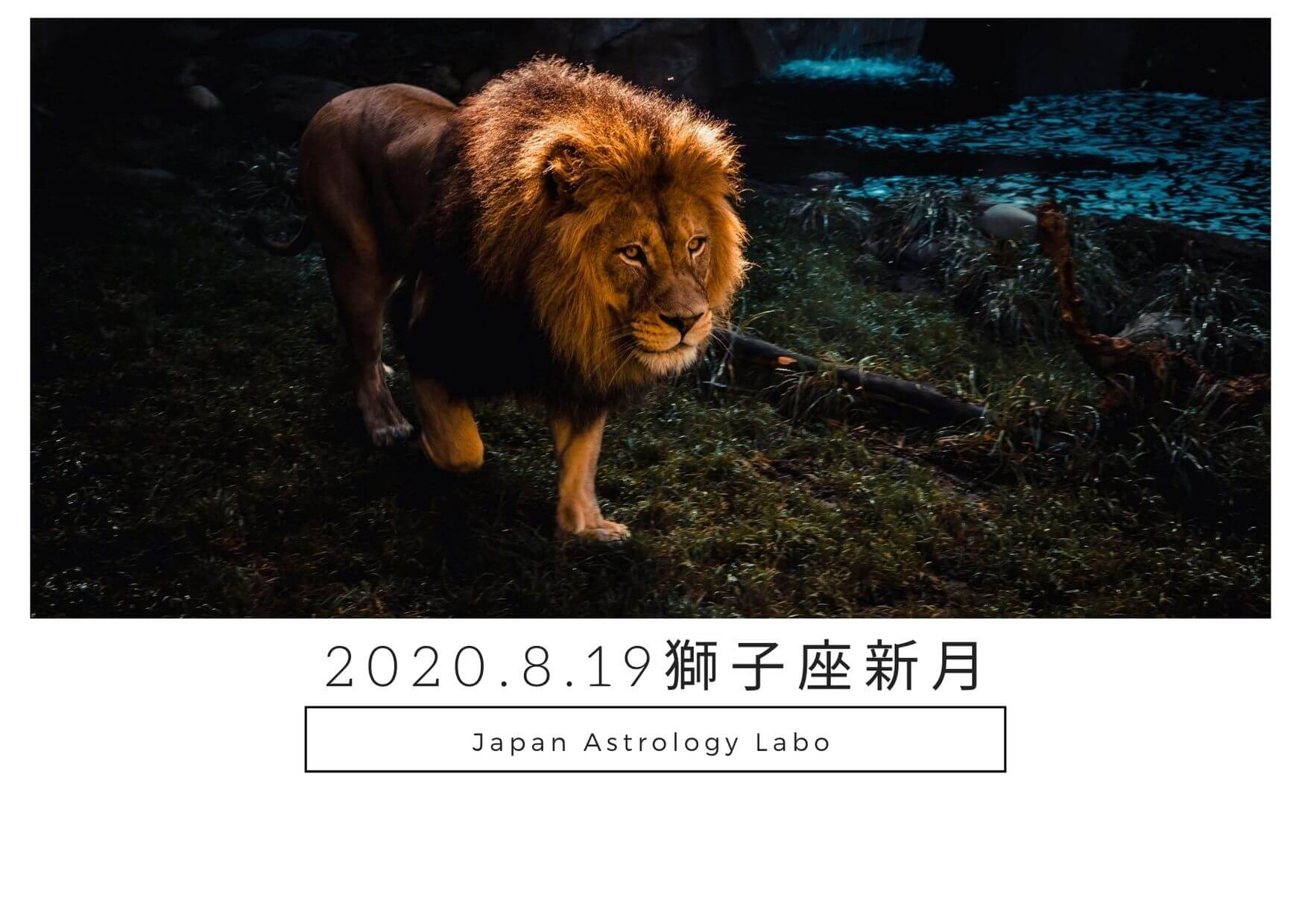 2020年獅子座新月